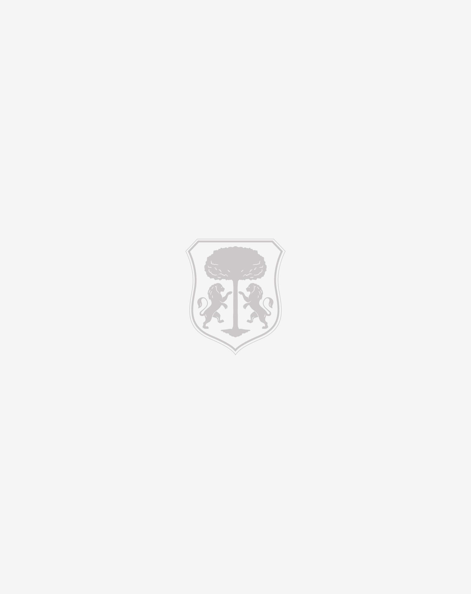 Blue printed silk clutch bag